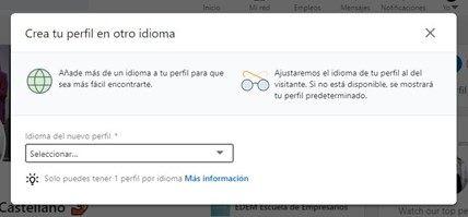 idioma perfil linkedin 2